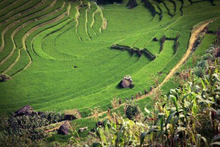 越南 風景